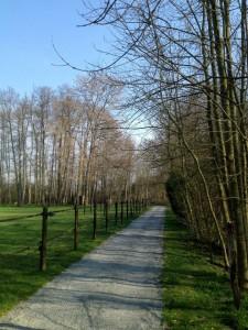 acces-cabane-de-la-riviere
