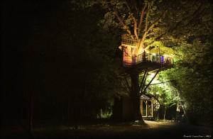 La cabane de nuit