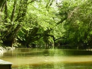la-riviere-qui-longe