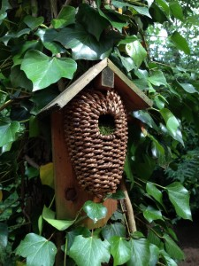 nid d'oiseaux de la clairière en bois