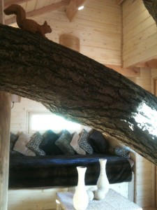 Salon de la cabane de la rivière au soleil