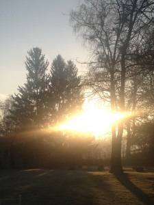 soleil-au-reveil