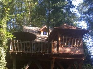 Cabane ensoleillé dans les arbres
