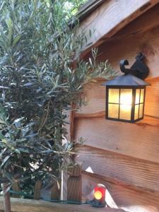 Lanterne sur mur en bois