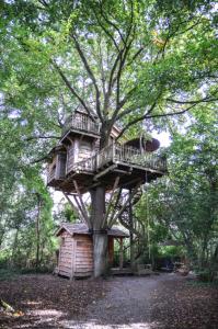 Une cabane nichée dans les bois